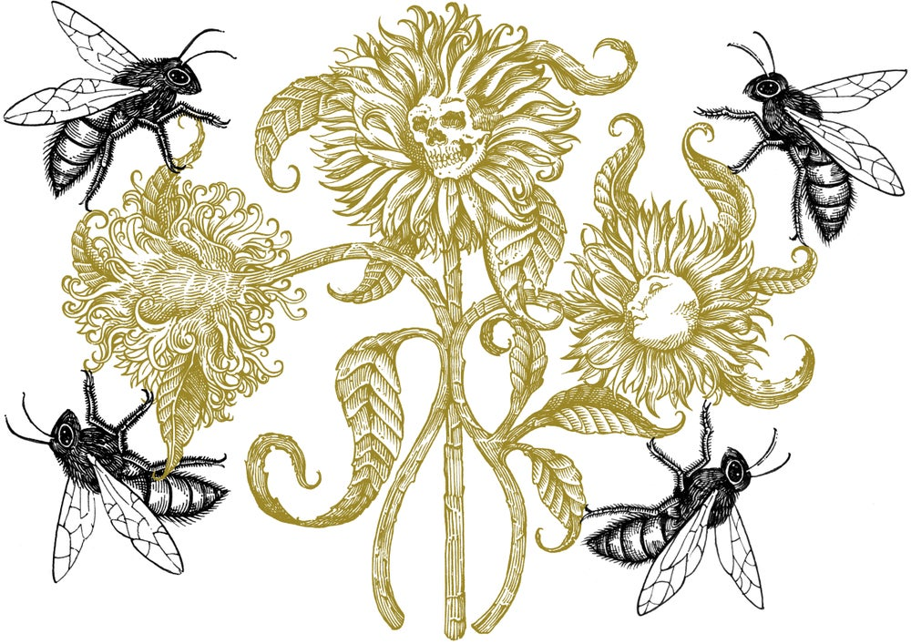 """Image of """"honey bloom"""" limited edition screen  print"""