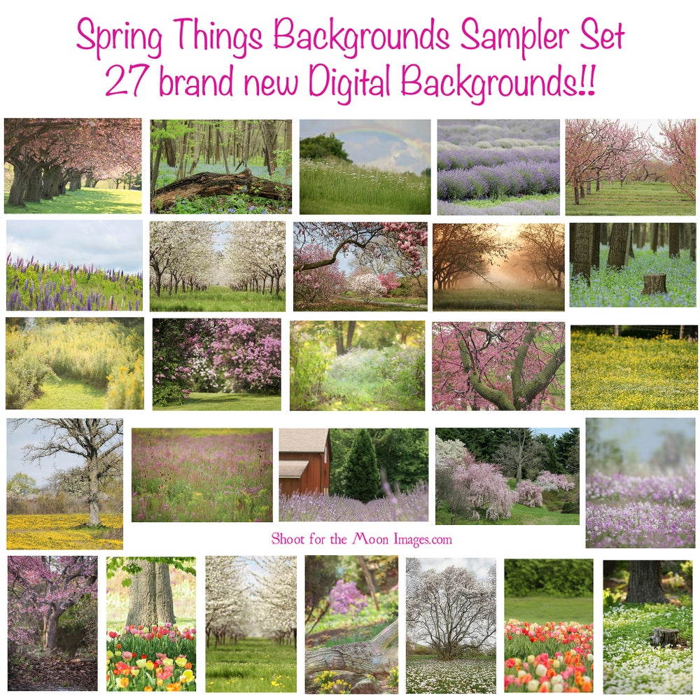 Image of Spring Things Backgrounds Sampler Set