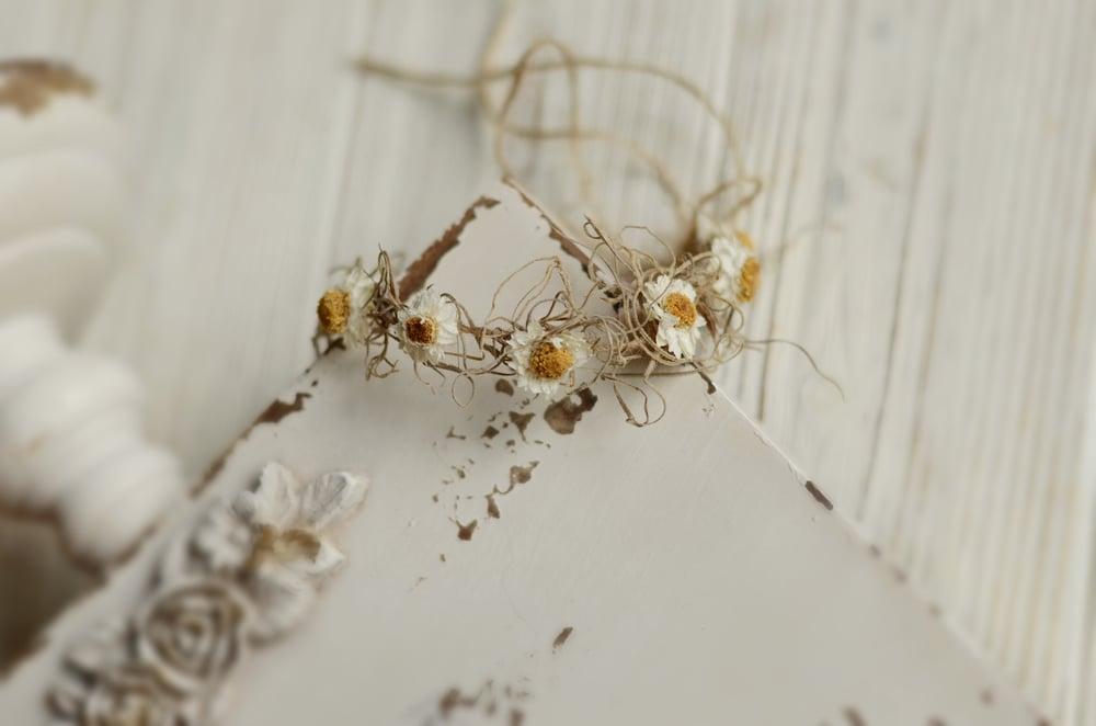 Image of Willow tieback
