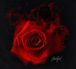 Image of Rose Smoke T-Shirts