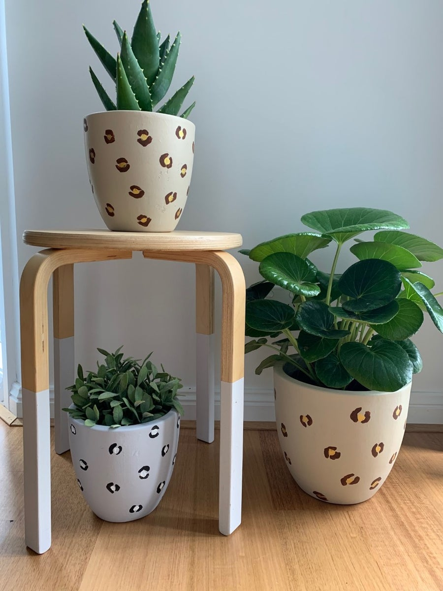 Image of Planters SMALL