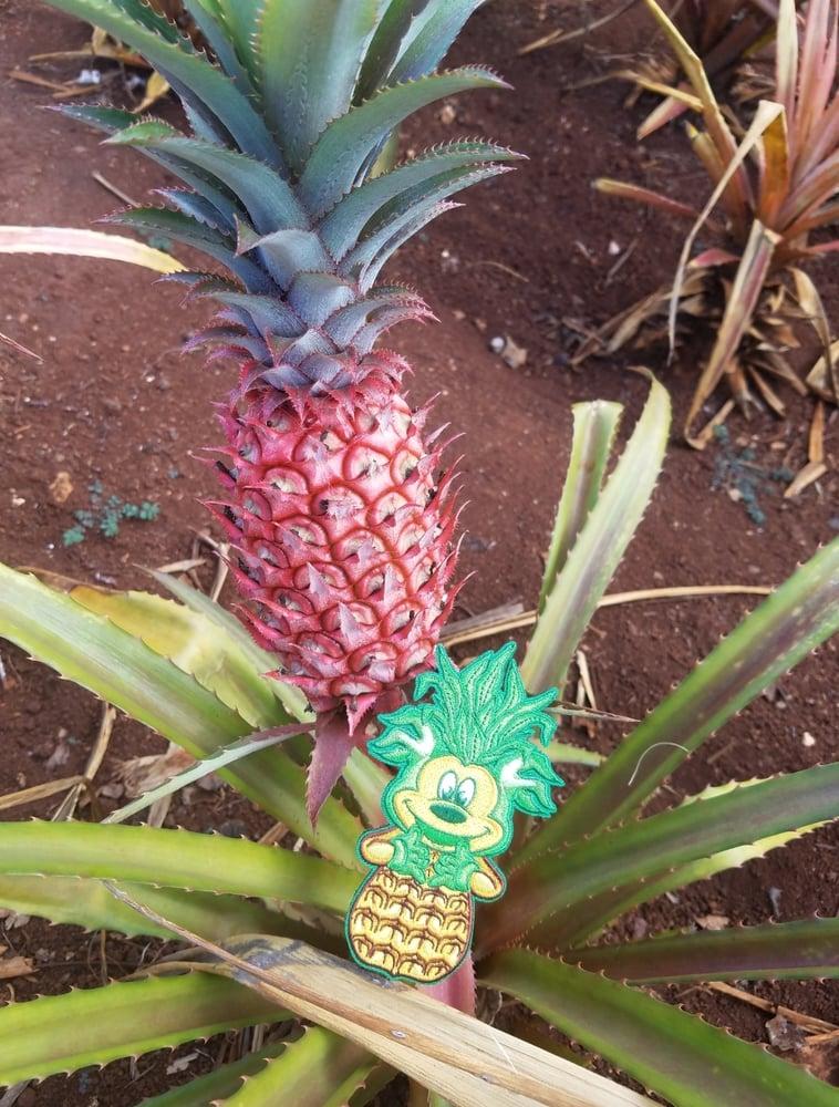 Image of Pineapple Rat