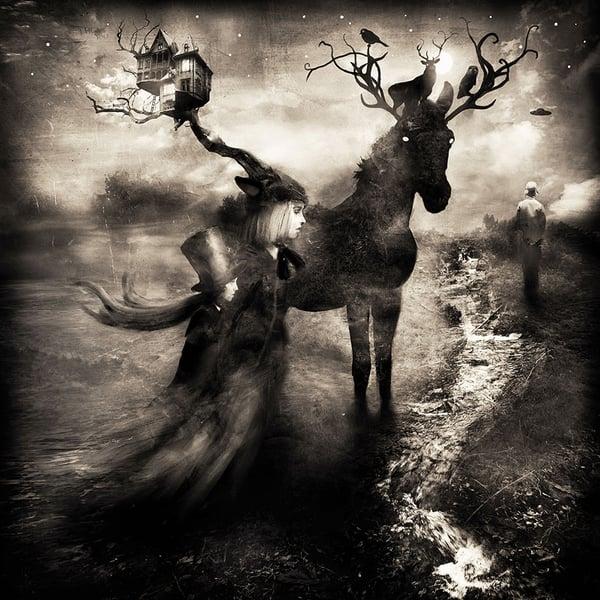 """""""Nocturnal""""  - Alexander Jansson Shop"""