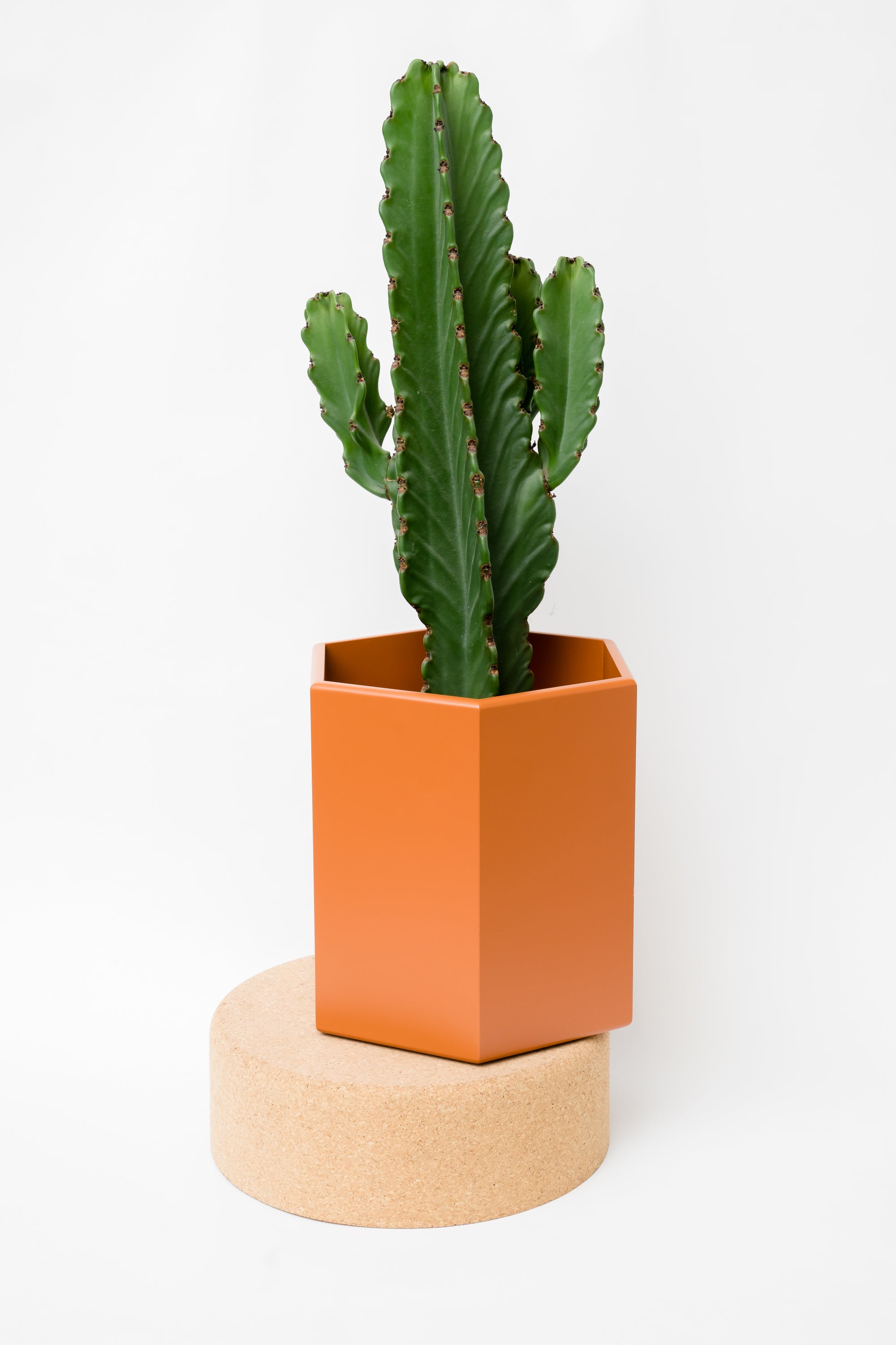 Image of Plant Pot - L