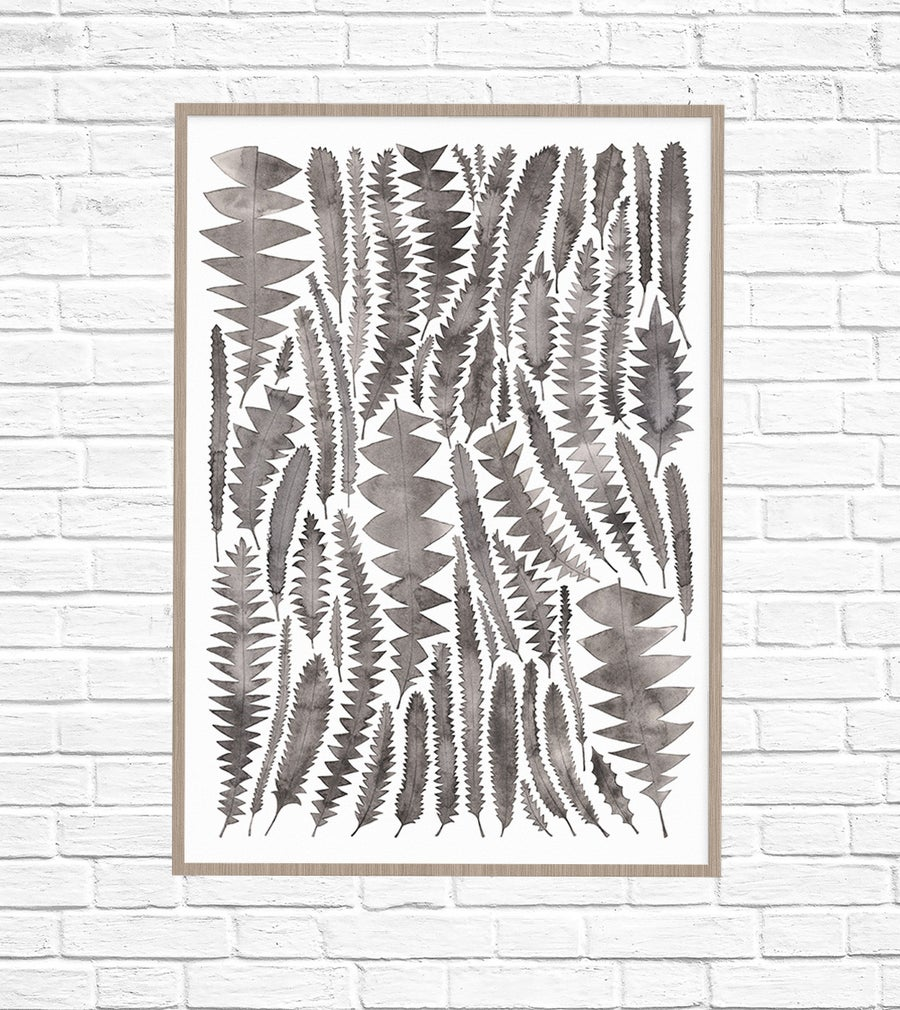 Image of Charcoal Banksia Leaves Fine Art Print