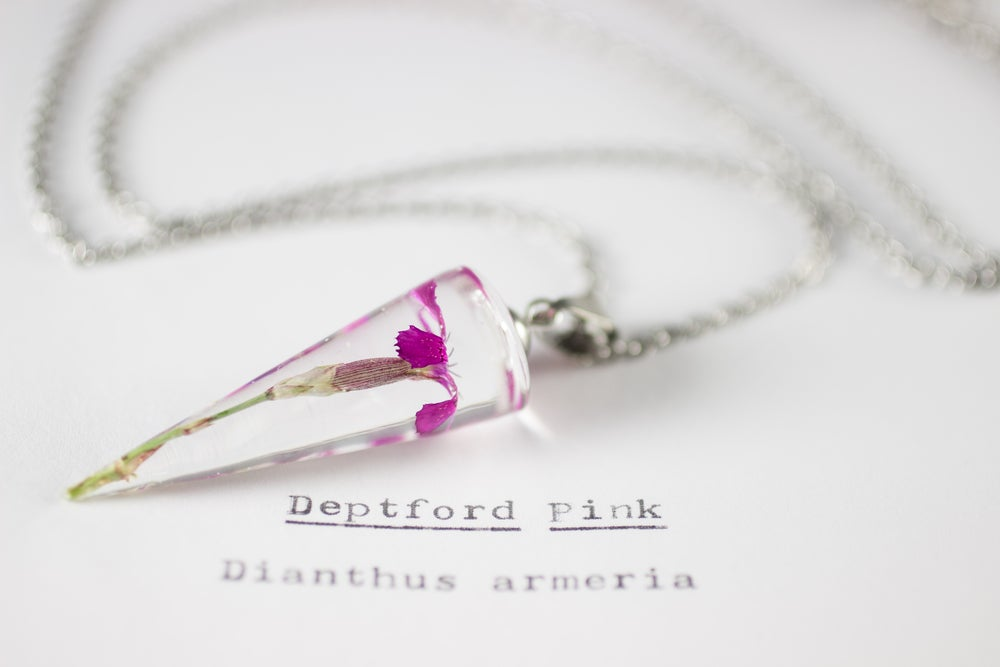 Image of Deptford Pink (Dianthus armeria) - Conical Pendant #2