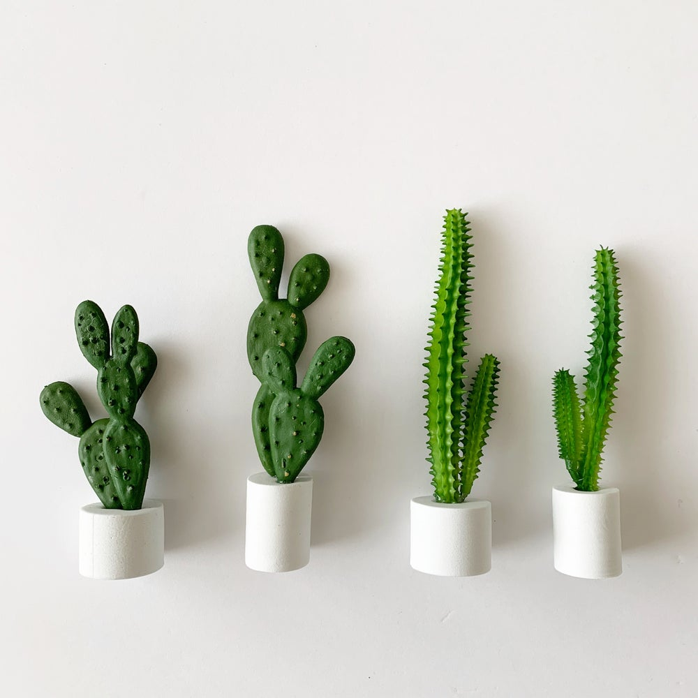 Image of Modern Potted Cacti