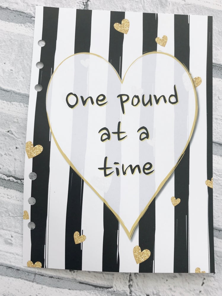 Image of A5 ONE POUND AT A TIME FOOD DIARY INSERT