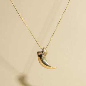 Image of Griz Claw Pendant