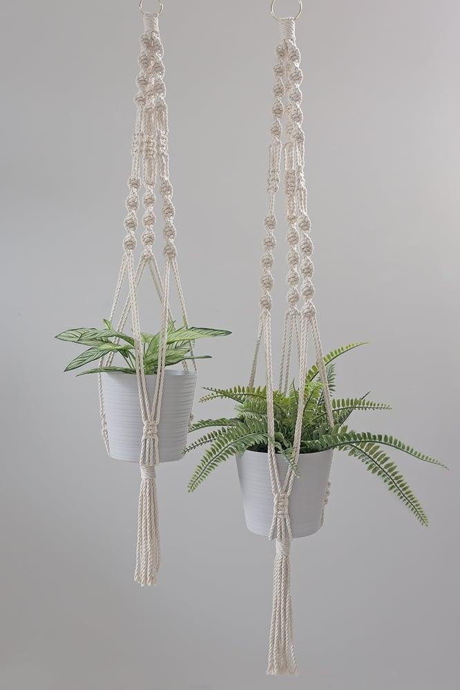 Image of Gwen Macrame Plant Hanger