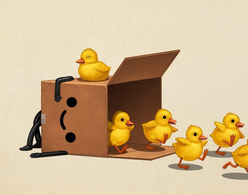 Image of Boxo II (ducks)