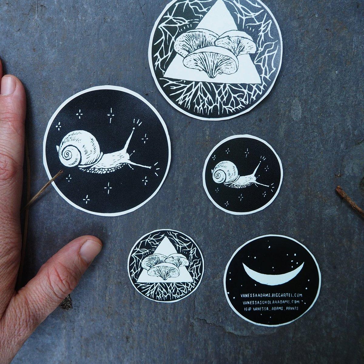 Image of Snail Vinyl Sticker