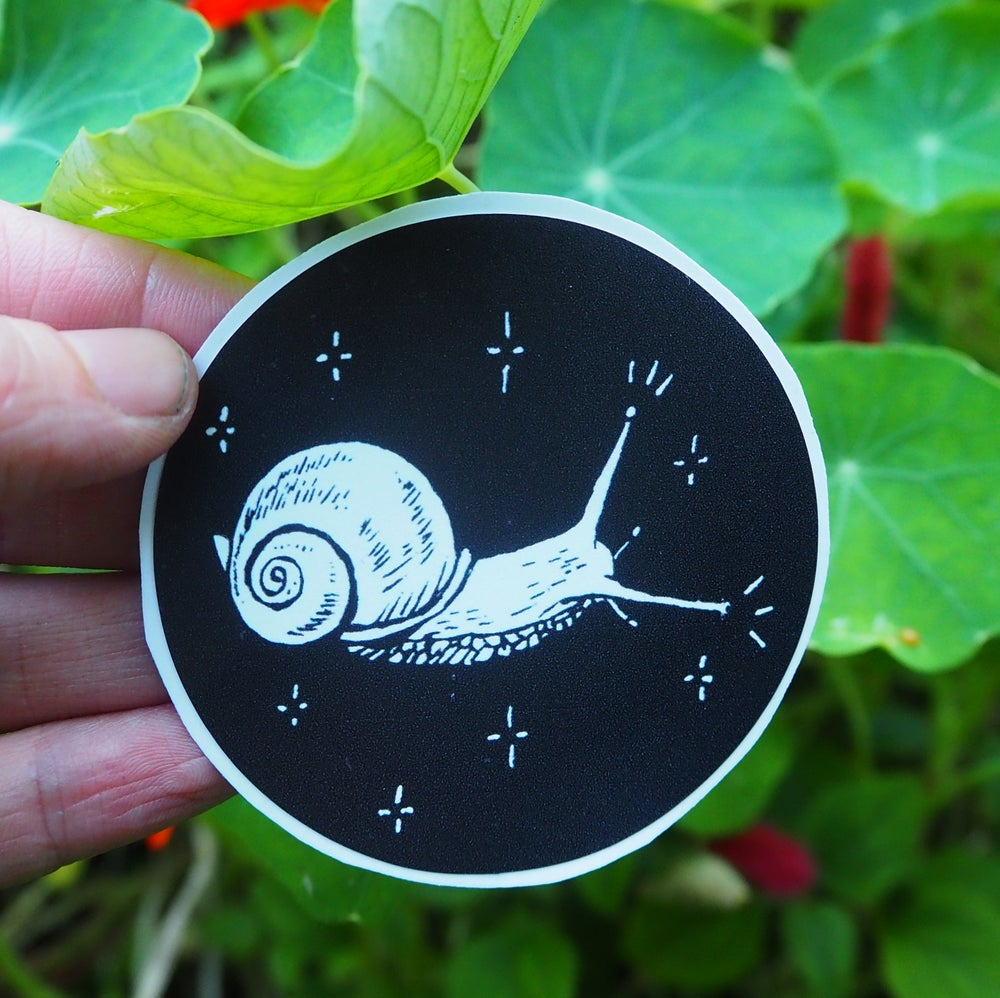 Image of Snail Vinyl Sticker