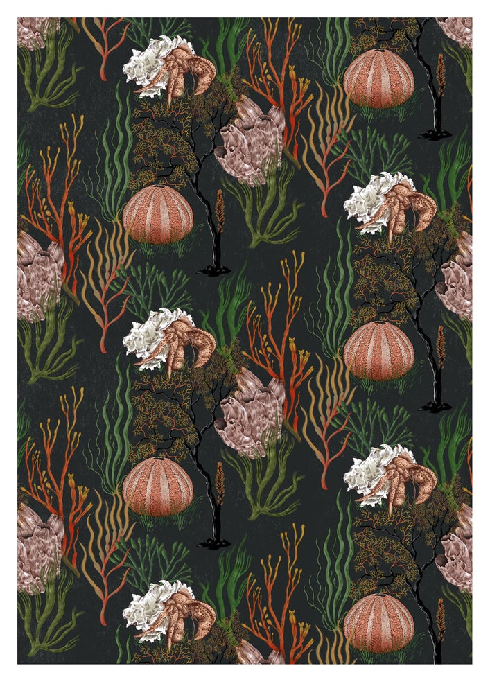 Image of A2 Coral print