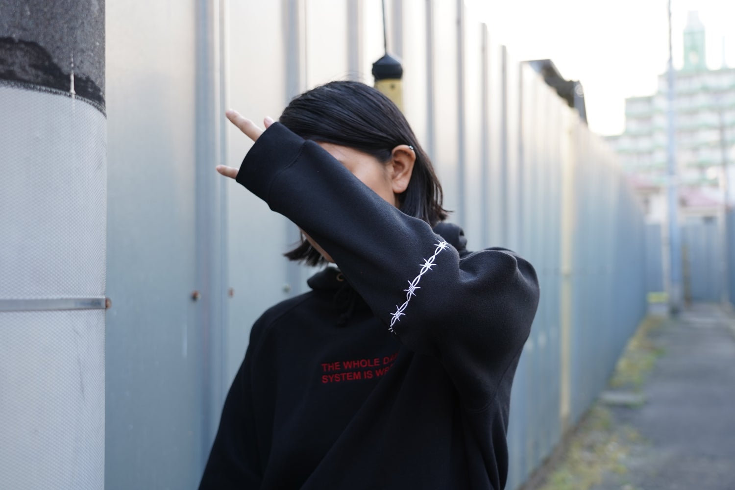Image of The Whole Damn System Hoodie (Black)