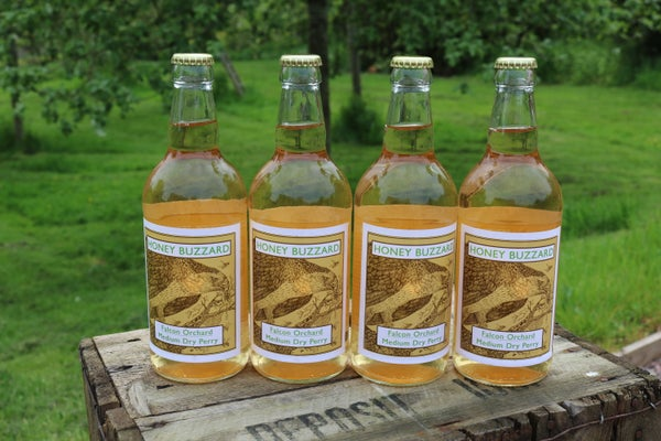 Image of Honey Buzzard Falcon Orchard (Single Variety)  Medium Dry Natural Perry, 4 bottles
