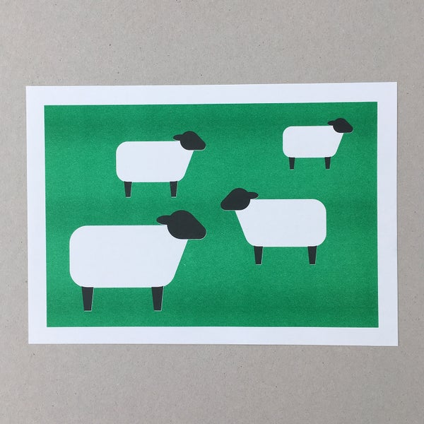 Image of Sheep A4 Riso Print