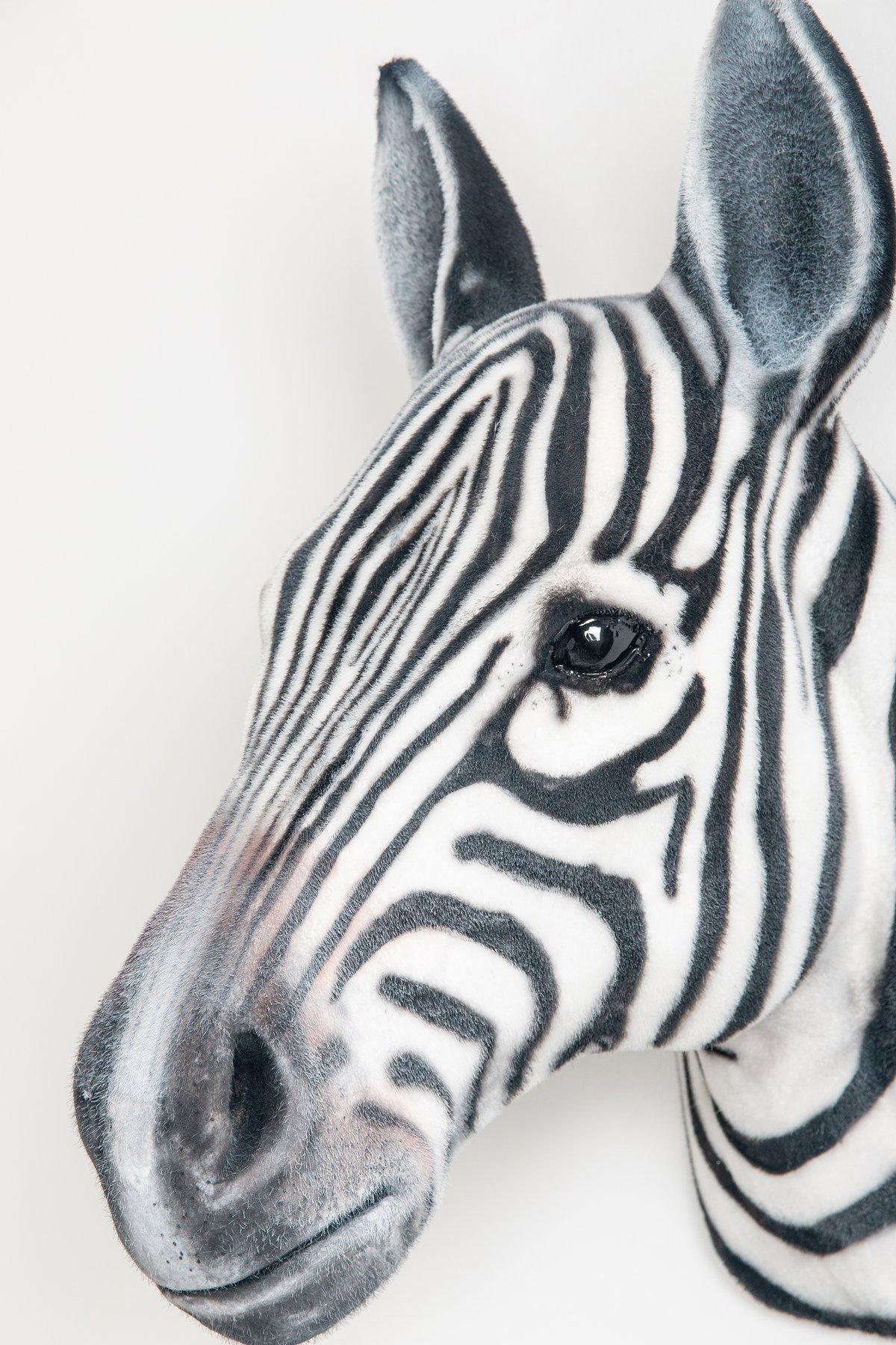 Image of Zebra Sculpture