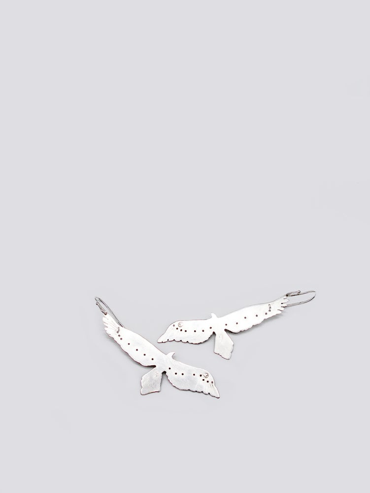 Image of BIRD EARRING: WEDGE TAILED EAGLE (STERLING SILVER)