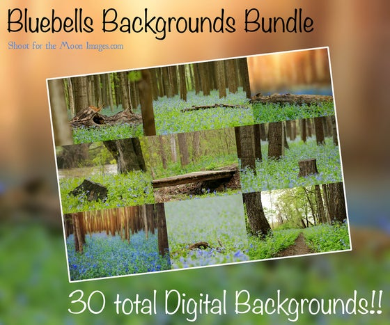 Image of Bluebells Backgrounds Bundle