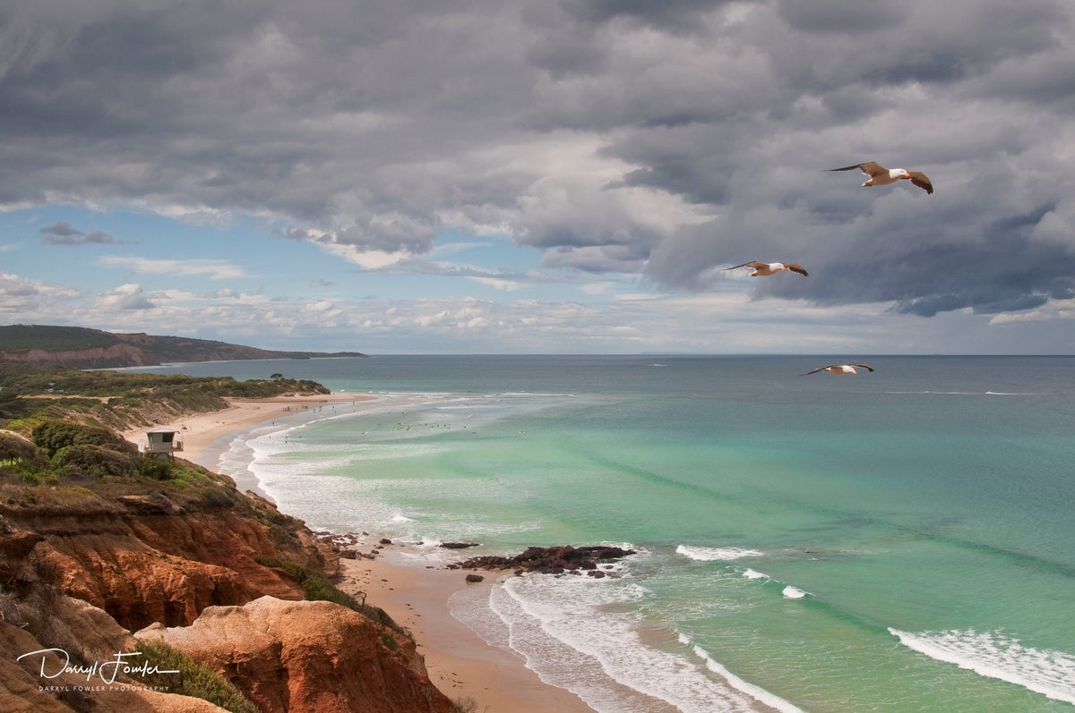 Image of Southern FlyBy, Anglesea.