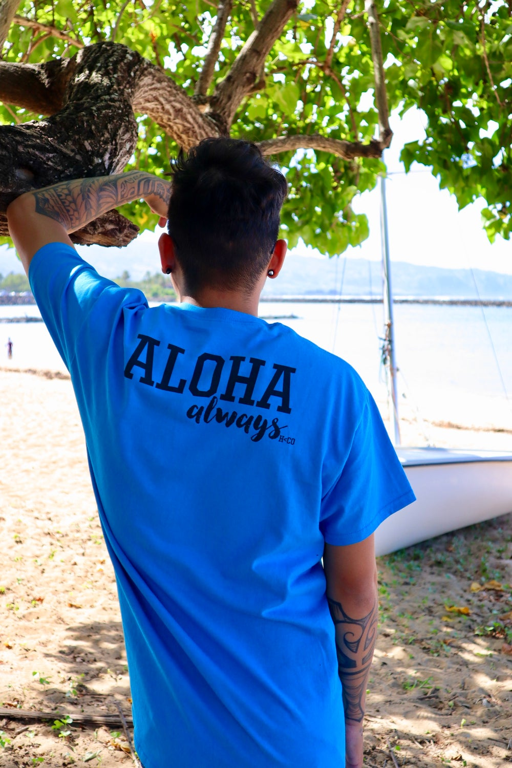 Never Give Up/Aloha Always