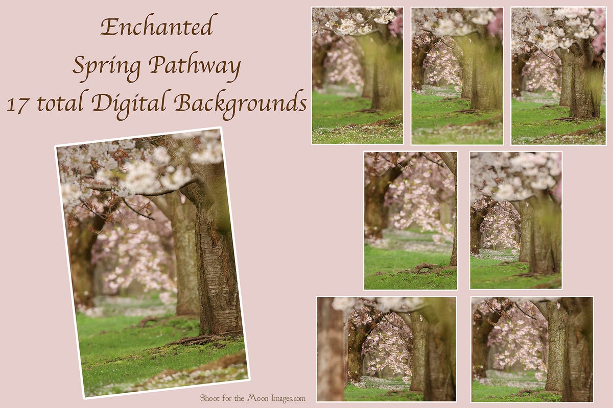 Image of Enchanted Spring Pathway Digital Backgrounds