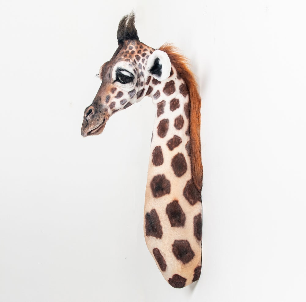 Image of Baby Giraffe Sculpture