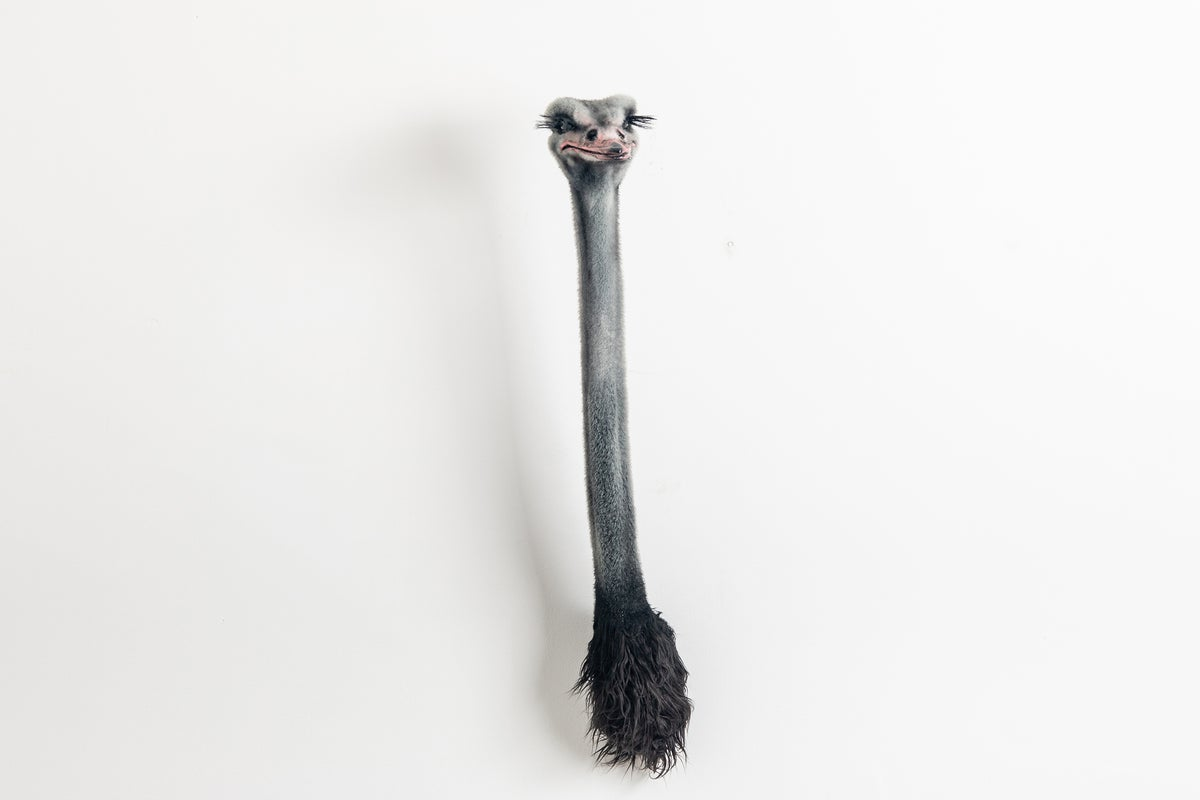 Image of Ostrich Sculpture
