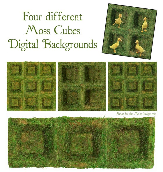 Image of Moss Cubes Digital Backgrounds