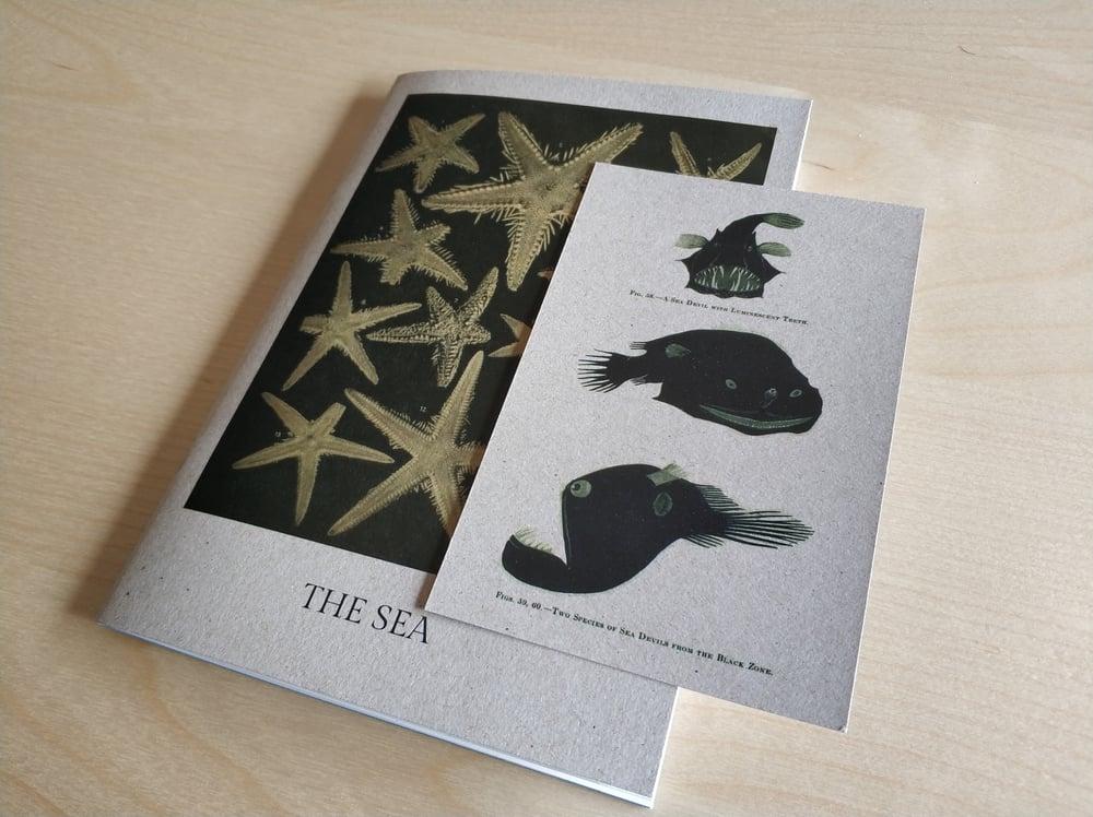 Image of 'The Sea' zine
