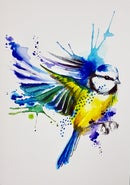 Image of SOLD OUT - Bluetit unframed A4 size