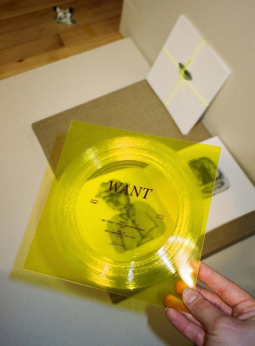 "Image of ""Want"" Book by Jae Matthews w/ BOY HARSHER / NEN split Flexi"