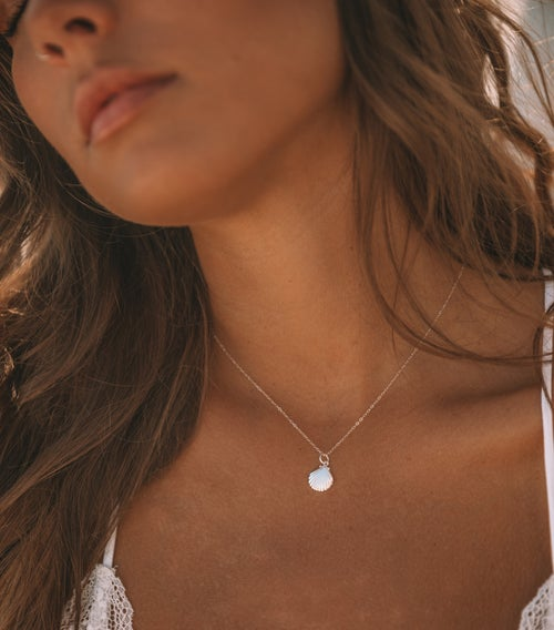 Image of The Baby Shell Necklace