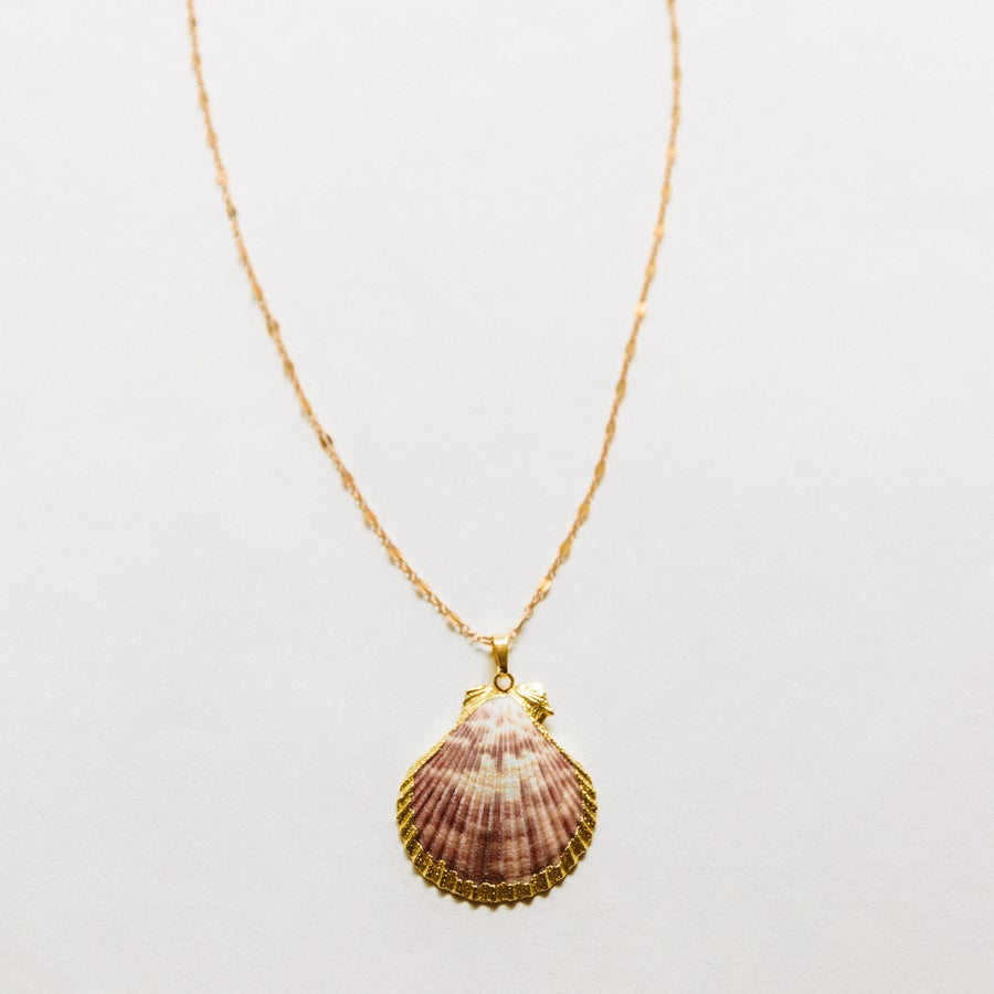 Image of The Pink Shell Necklace