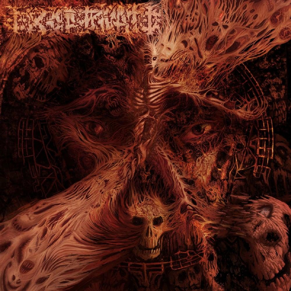 Image of Excarnate - Excarnate MCD