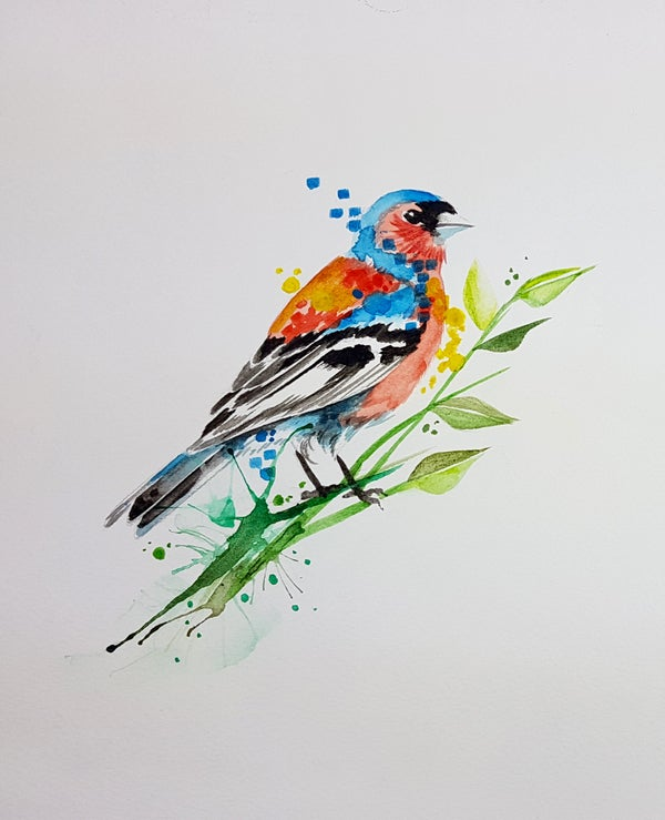 Image of Ben's Chaffinch unframed A4 size