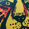 Riso Tiger