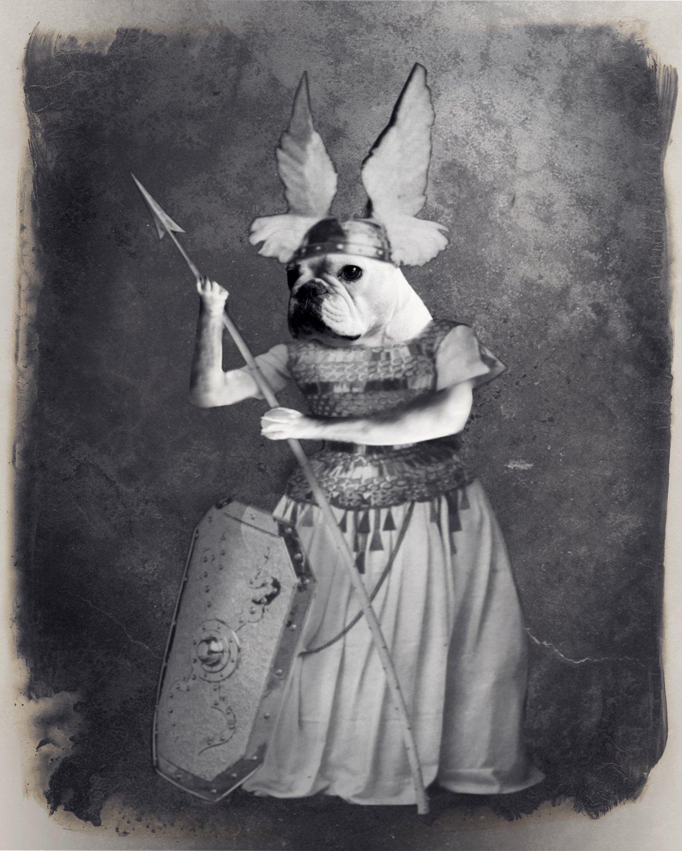Image of Brunhilde