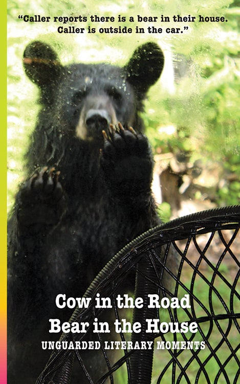 Image of Cow in the Road ~ Bear in the House