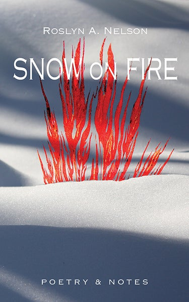 Image of Snow on Fire