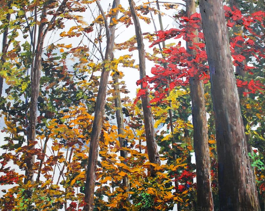 Image of - Alder Trees -