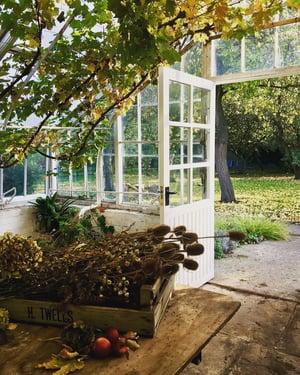 Image of Autumn Dried Flower Workshop