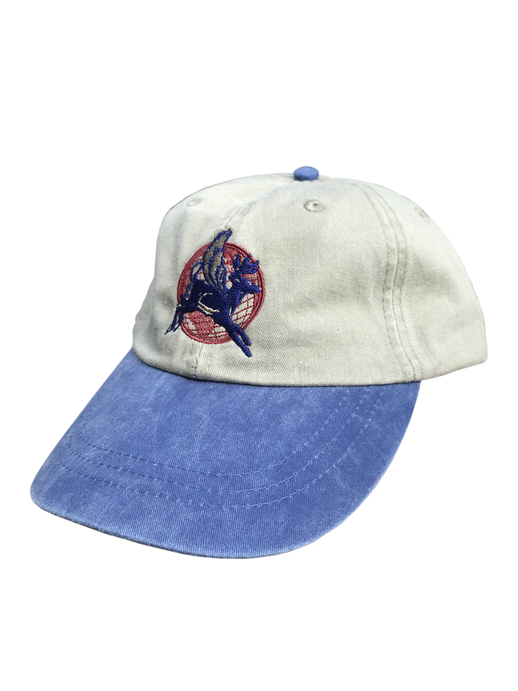 Image of EXPRESS 6-PANEL CAP