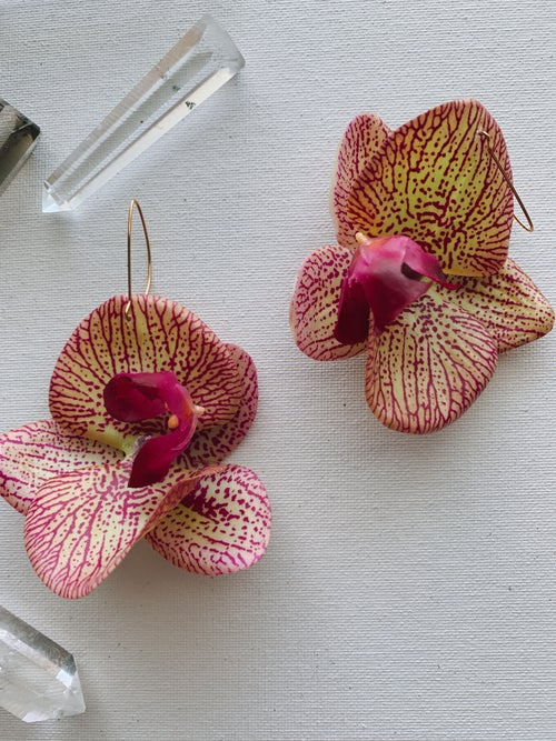 Image of FLOWER GANG :: Striped Orchid Earrings