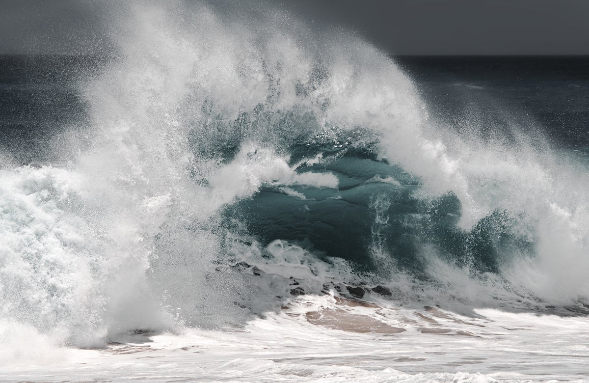 Image of Splash