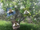 Image 5 of Bumblebees!!