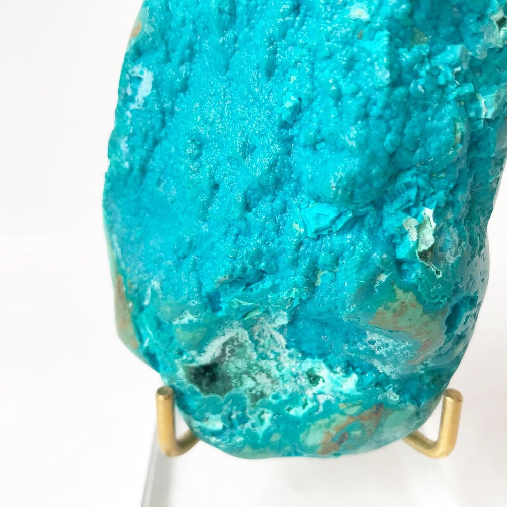Image of Chrysocolla no.04 Scarab Collection Lucite Pairing