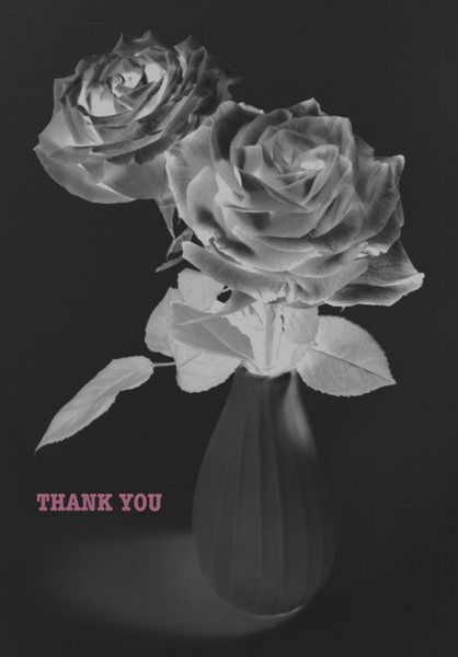 Image of ROSES, THANK YOU