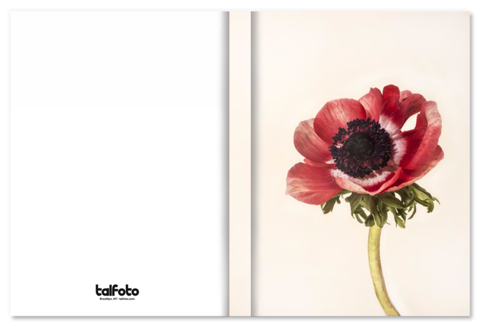 Image of POPPY NOTEBOOK